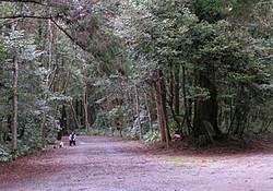 20050312-05